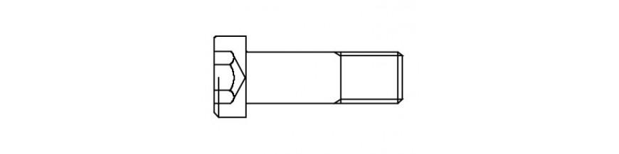 BZK.SCHROEF LCK  DIN 7984 M 6X 50 INOX A2
