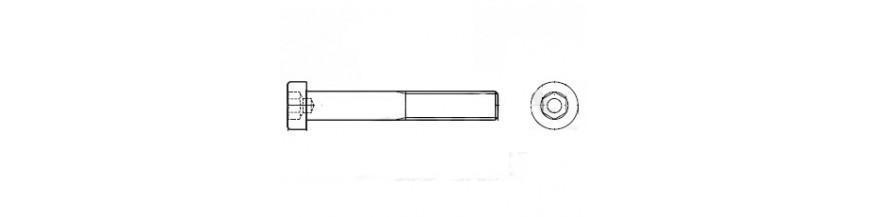 BZK.BOUT LCK 10.9 DIN 6912 M6X 16